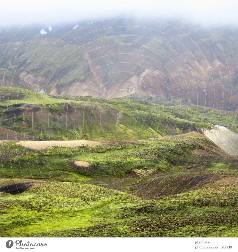 Landmannalaugar Island Europa kalt Regen Campingplatz schön Ödland nass grün Nebel braun Natur Landschaft Berge u. Gebirge karg Nieselwetter Wetter Bach Pflanze
