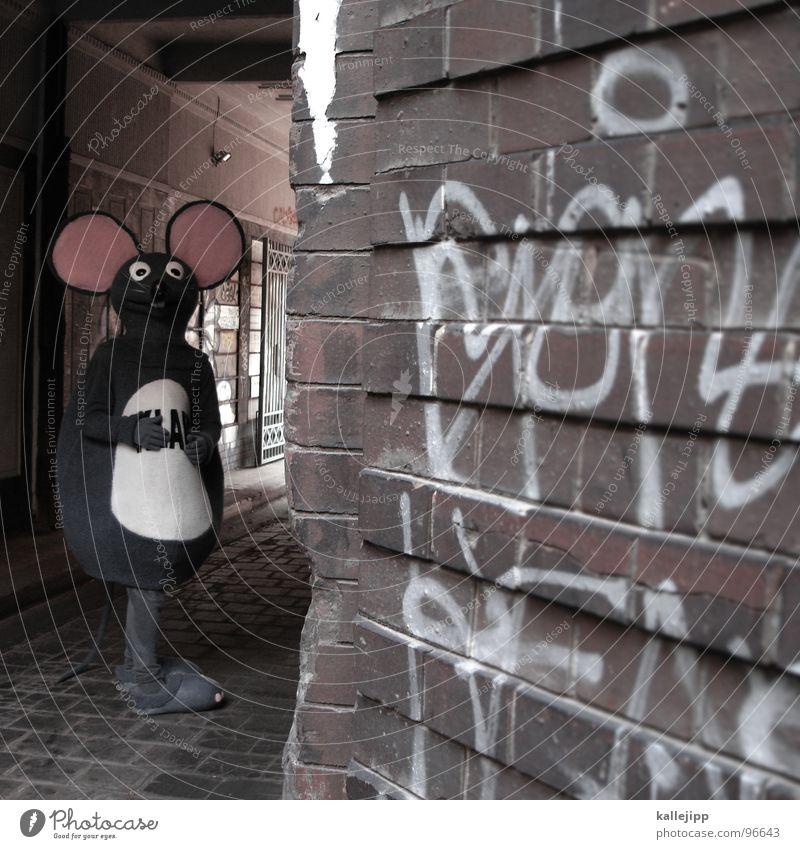 in der falle Mensch Freude Tier lachen lustig Nase Ohr Maske heiß Student Beruf Zeichen Fell Karneval Bauernhof Werbung