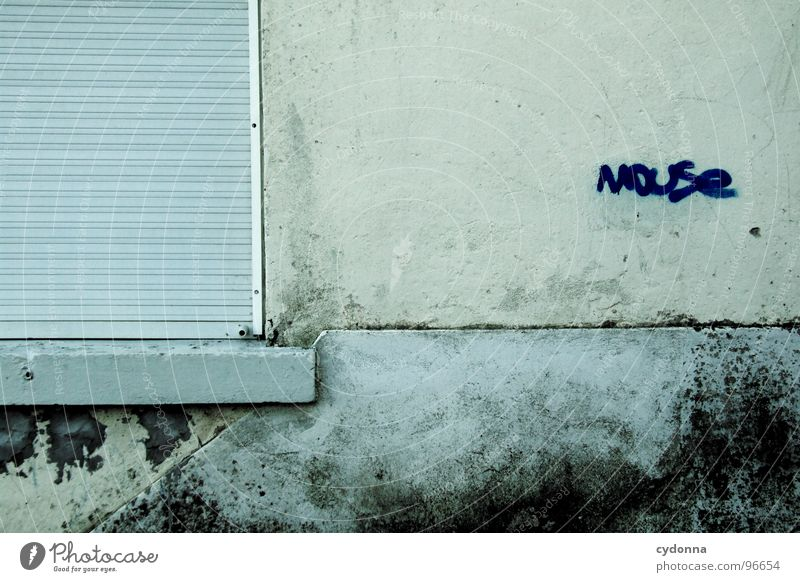 gemoused alt Stadt schön Ferien & Urlaub & Reisen Farbe Haus Fenster Leben Wand Graffiti Architektur Kunst außergewöhnlich Schriftzeichen Häusliches Leben