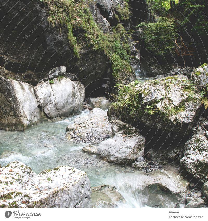 Feuchtigkeit | umgehen Ausflug Abenteuer Berge u. Gebirge wandern Landschaft Urelemente Wasser Felsen Alpen Schlucht Seisenbergklamm Bach Wildbach Wege & Pfade