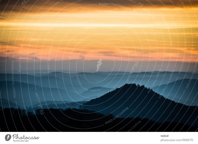 Südpfalz | Sunset Natur Landschaft Pflanze Himmel Wolken Horizont Sonnenaufgang Sonnenuntergang Herbst Schönes Wetter Baum Wald Hügel Berge u. Gebirge Gipfel