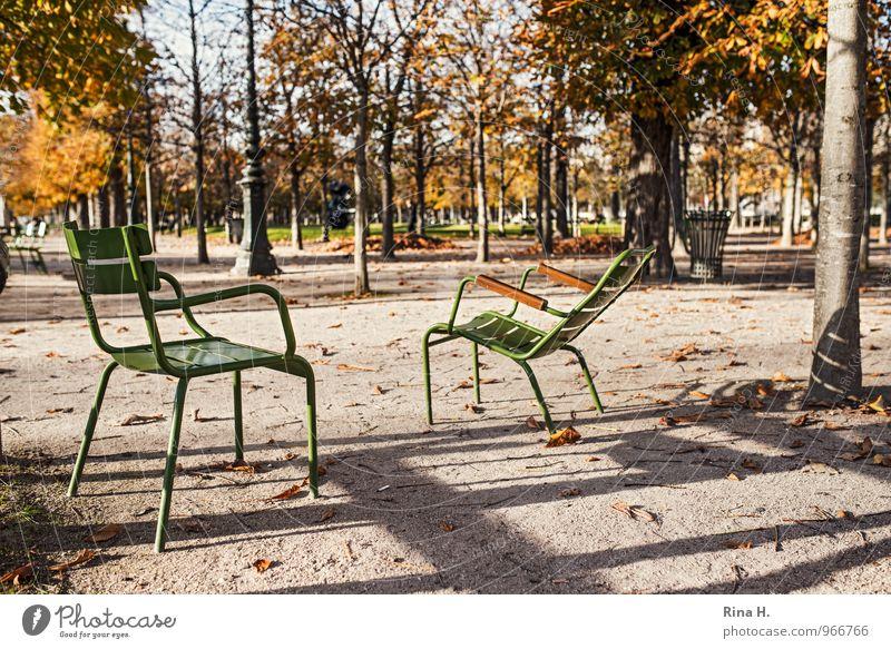 WartePosition Baum Garten Park Paris warten 2014 Tuileries Gartenstuhl Herbstlaub Farbfoto Außenaufnahme Menschenleer Licht Schatten Schwache Tiefenschärfe