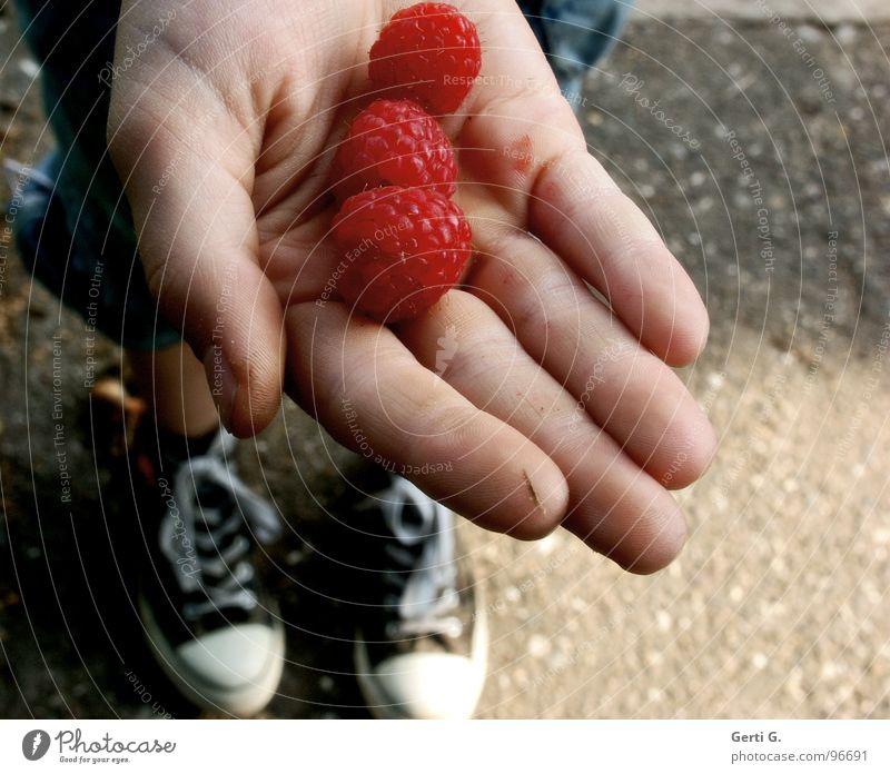 nimm 3 Hand rot Ernährung Gras Wege & Pfade Stein Essen Schuhe Frucht Haut 3 Beton frisch Finger rund Ernte