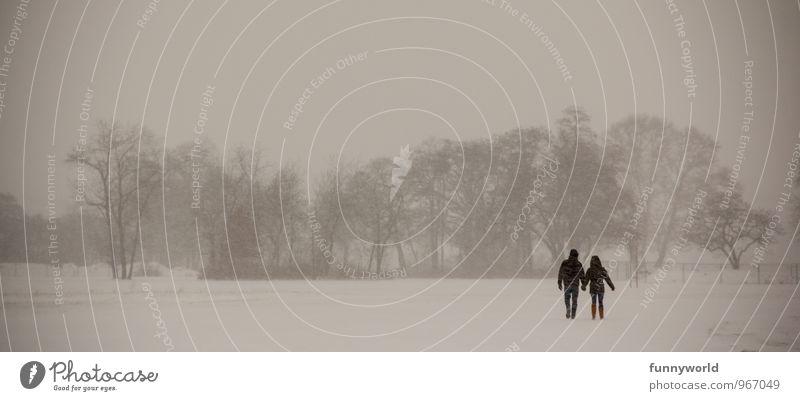 Winterpaarspaziergang Mensch Paar Leben 2 Natur Nebel Eis Frost Schnee Baum Park Feld Stimmung Vertrauen Sicherheit Einigkeit loyal Sympathie Freundschaft
