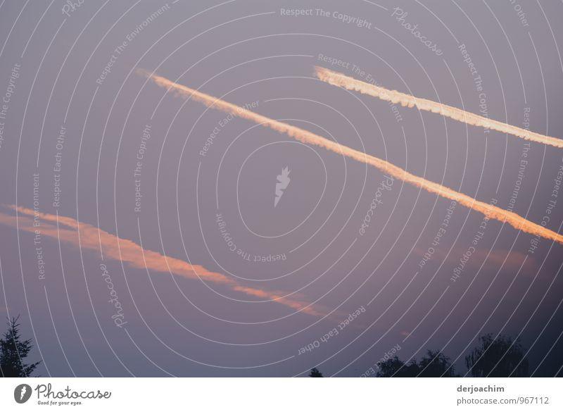 Alle auf Kurs Freude harmonisch Umwelt Himmel Sommer Schönes Wetter Franken Bayern Deutschland Kleinstadt Menschenleer Flugzeug beobachten entdecken genießen