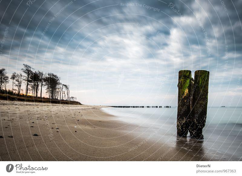 Dreierlei Umwelt Natur Landschaft Erde Sand Wasser Himmel Wolken Horizont Wind Baum Wald Küste Strand Ostsee blau braun schwarz weiß Ferne Buhne alt morsch