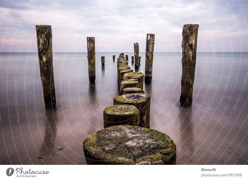 Hinein Natur Sand Wasser Himmel Wolken Wetter Küste Ostsee blau violett schwarz weiß Buhne maritim Farbfoto Außenaufnahme Menschenleer Textfreiraum links