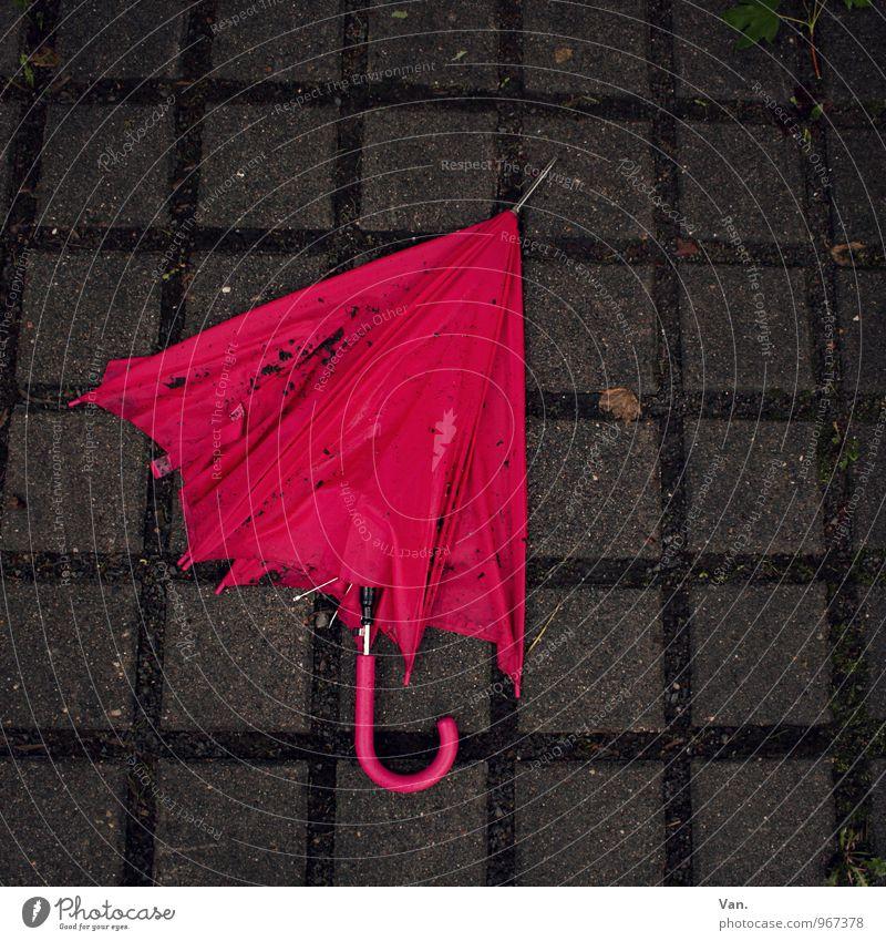 Der Herbst ist vorbei Herbst grau Stein rosa nass Bürgersteig Regenschirm Pflastersteine