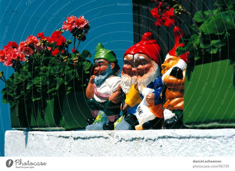 zwergenparade Zwerg Gartenzwerge Fenster Pelargonie Fensterbrett Sommer mehrfarbig Spießer Dorf Blume Blumenkasten rot grün lustig Deutschland Blick blau