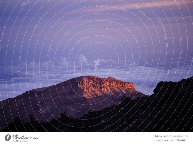 Sonnenuntergang auf dem Teide Umwelt Natur Landschaft Berge u. Gebirge Ferne Wolken Teneriffa Bergkette Gipfel Abenddämmerung Farbfoto