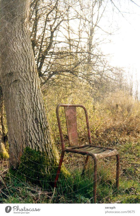 Zeit Baum ruhig Pause Trauer Einsamkeit Erholung abgelegen herbstlich Umwelt verfallen Schrott Eiche Baumrinde Wiese kaputt Sträucher Herbst Möbel Erinnerung