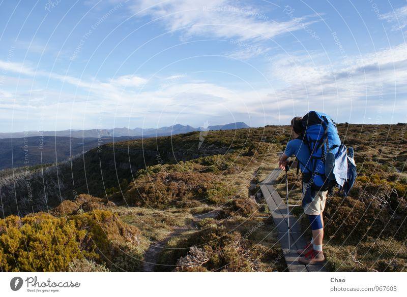 Overland Track Mensch Natur Ferien & Urlaub & Reisen Jugendliche Sommer Landschaft 18-30 Jahre Erwachsene Berge u. Gebirge Sport maskulin wandern Ausflug
