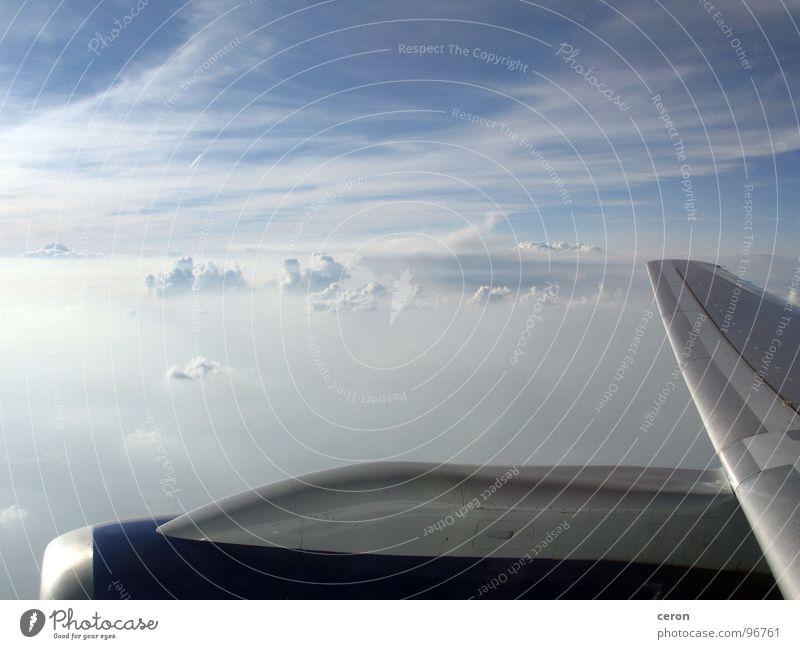 Über den Wolken Himmel Freiheit träumen Flugzeug Europa Flügel