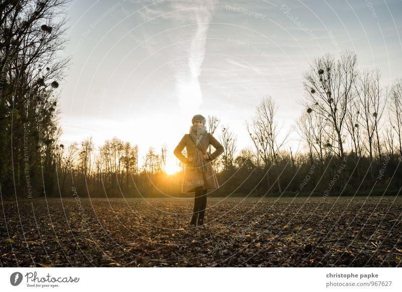 Am Ende des Tages feminin Frau Erwachsene 1 Mensch 30-45 Jahre Sonnenaufgang Sonnenuntergang Sonnenlicht Herbst Winter Baum Feld Mantel Mütze stehen schön