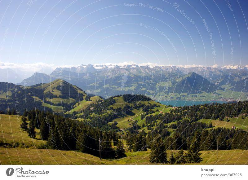 Rigi Umwelt Natur Landschaft Pflanze Erde Luft Wasser Himmel Wolkenloser Himmel Horizont Sonne Sonnenlicht Frühling Sommer Klima Klimawandel Schönes Wetter