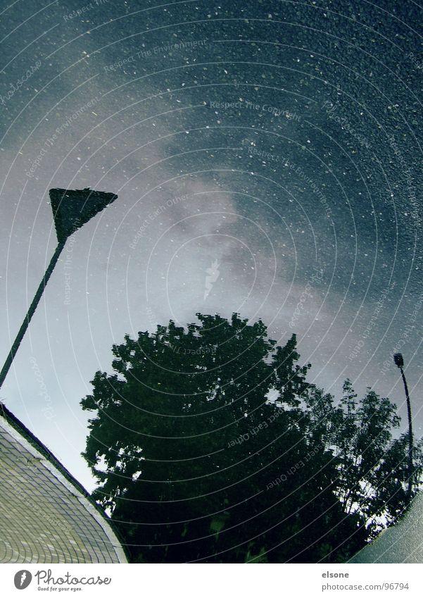 sternenwasser Pfütze Baum Nacht nass kalt Herbst Reflexion & Spiegelung Fußgänger Bordsteinkante Einsamkeit Beton braun Aussicht falsch Gewitter Wasser