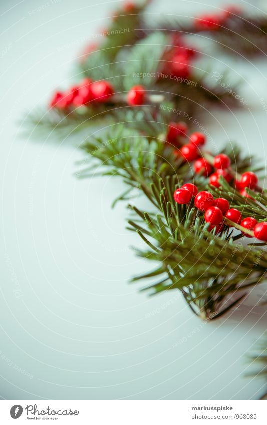 weihnachts decoration stechpalme elegant Stil Häusliches Leben Wohnung Innenarchitektur Dekoration & Verzierung Weihnachten & Advent Pflanze Moos Tannennadel