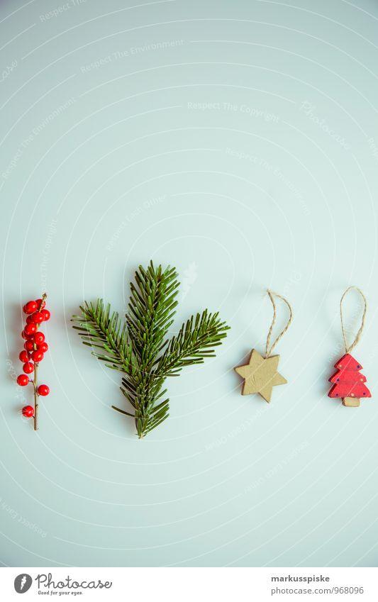 weihnachts decoration stechpalme elegant Stil Design Häusliches Leben Wohnung Innenarchitektur Dekoration & Verzierung Weihnachten & Advent Pflanze Sträucher
