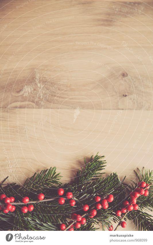 weihnachts decoration stechpalme Reichtum elegant Stil Häusliches Leben Wohnung Innenarchitektur Dekoration & Verzierung Weihnachten & Advent Moos Stechpalme