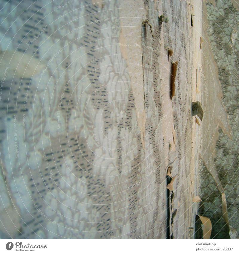 der letzte ecke Tapete Striptease Modernisierung Arbeit & Erwerbstätigkeit kaputt kratzen Haushalt Wohnzimmer Handwerk wallpaper selbstgemacht work