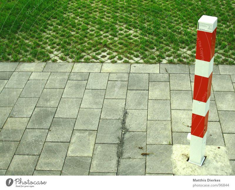 FORBIDDEN 2 Barriere Verbote Baustelle Wiese Gras gestreift kariert Muster gefährlich Arbeit & Erwerbstätigkeit Garten Park Grenze Wege & Pfade Rasen