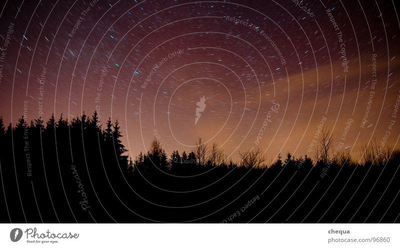 ROTATION Nacht Wald dunkel Drehung Licht schwarz violett Langzeitbelichtung Himmel Erde orange Sternenhimmel