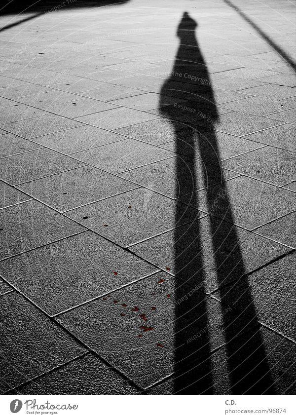 mein stiller Begleiter Comic schwarz weiß grau Trauer Gefühle Spiegelbild Rostock Zwilling gehen Stadt Verkehrswege Schwarzweißfoto Schatten Stein Straße Blut