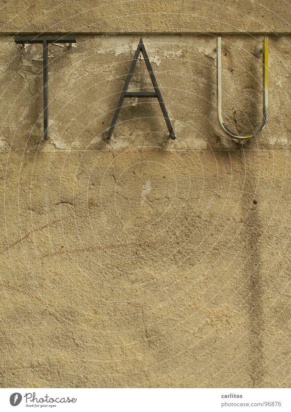 ...send Dank Buchstaben Buchstabensuppe Typographie Wand Putz Freiraum kondensieren Schriftzeichen Detailaufnahme Vergänglichkeit Seil Schilder & Markierungen