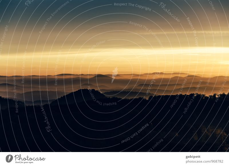 Südpfalz | HügelLichT Himmel Natur Ferien & Urlaub & Reisen Erholung Landschaft ruhig Ferne Wald Berge u. Gebirge Leben Herbst Freiheit Stimmung Horizont