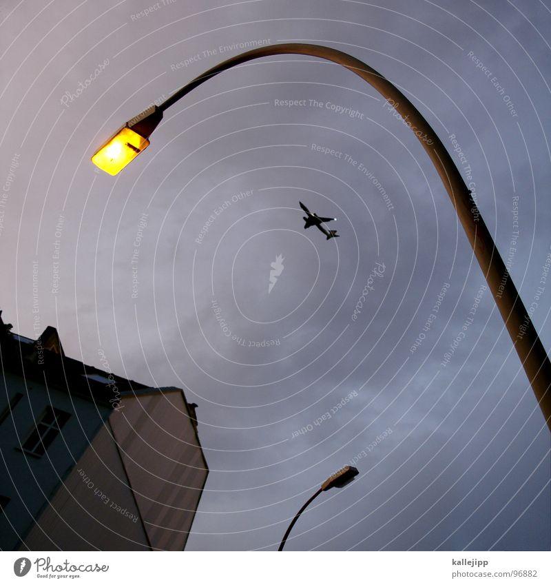 fliegen motten in das licht... Laterne Lampe Straßenbeleuchtung glühen erleuchten Motte Licht Haus Wand Flugzeug Beginn Verkehr Umweltverschmutzung Zeit