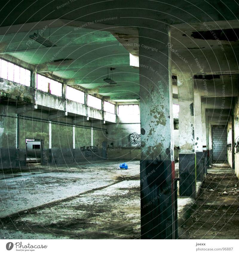 Aus-gestorben Tier Tod Traurigkeit Angst Industrie verfallen Todesangst Teilung Ruine Geruch töten Metzger Schlachtung elend