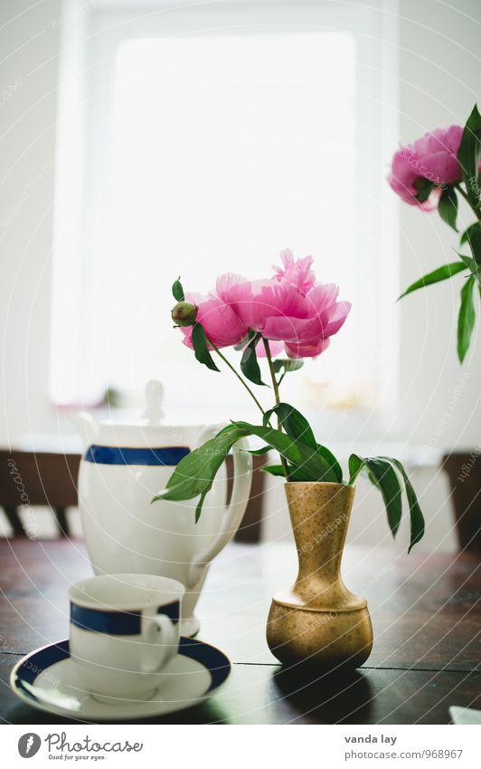 Kaffee jemand? Erholung Blume Essen Lifestyle Wohnung Raum Häusliches Leben Tisch Getränk Ostern trinken Tradition Frühstück Geschirr Tee