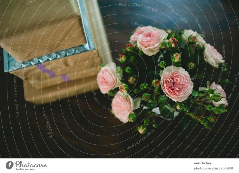 Geschenke!!!! Pflanze Innenarchitektur Stil Holz Feste & Feiern Wohnung Geburtstag Ostern Hochzeit Rose Blumenstrauß Reichtum Valentinstag Grünpflanze Paket