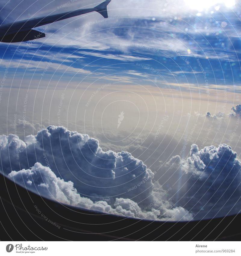 immer vorwärts Himmel Natur Ferien & Urlaub & Reisen blau weiß Sonne Wolken Ferne Flugzeugfenster fliegen Tourismus Luftverkehr frei hoch Geschwindigkeit