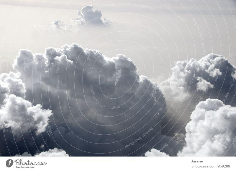 da braut sich was zusammen Himmel Natur Wolken Luft Luftverkehr bedrohlich Urelemente