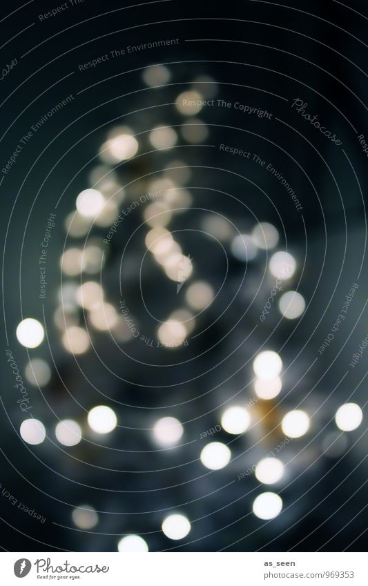 XMAS elegant Stil Design harmonisch Nachtleben Weihnachten & Advent Weihnachtsbaum Weihnachtsdekoration Zeichen Licht glänzend leuchten trendy gold grau silber