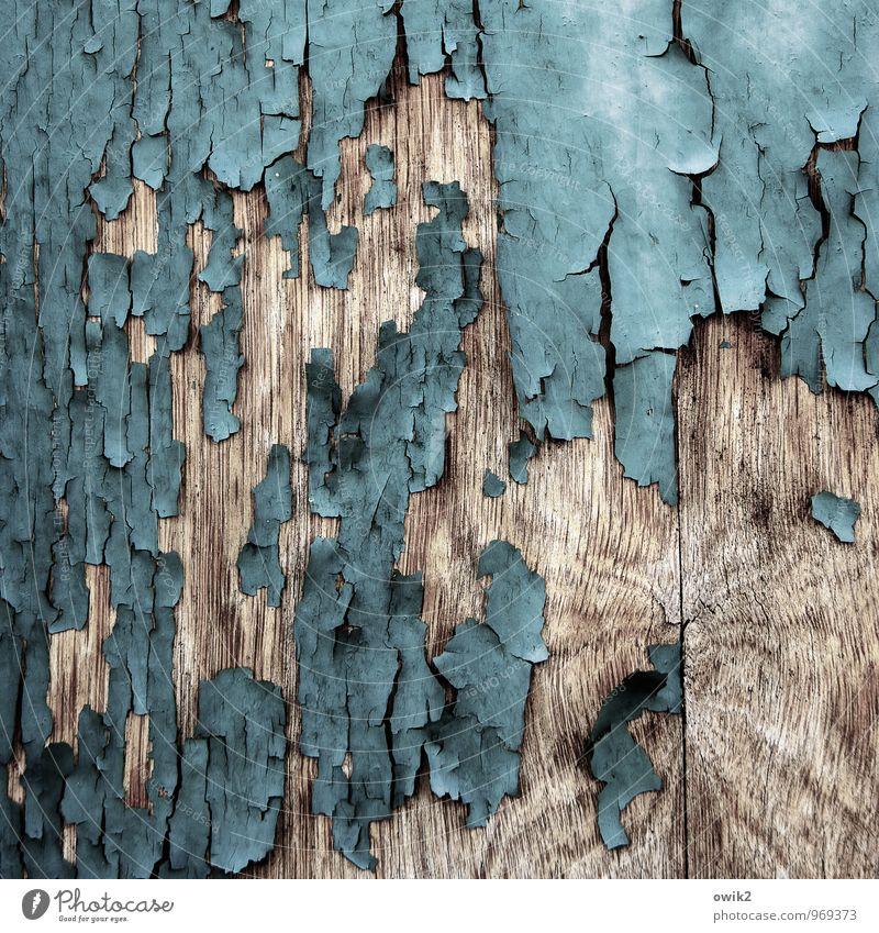 Zeitzeuge alt Farbstoff Holz Hintergrundbild Textfreiraum trocken Teile u. Stücke verfallen türkis trashig bizarr Oberfläche abblättern beweglich vertrocknet