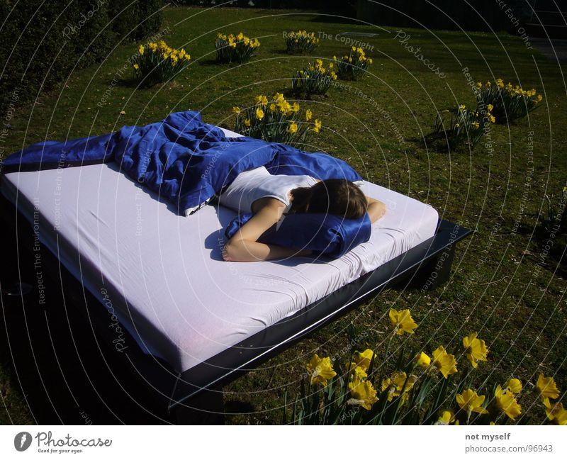 Dreamin' away II Natur Blume grün blau Sommer gelb träumen Park Wärme Feld schlafen Rasen Bett Physik