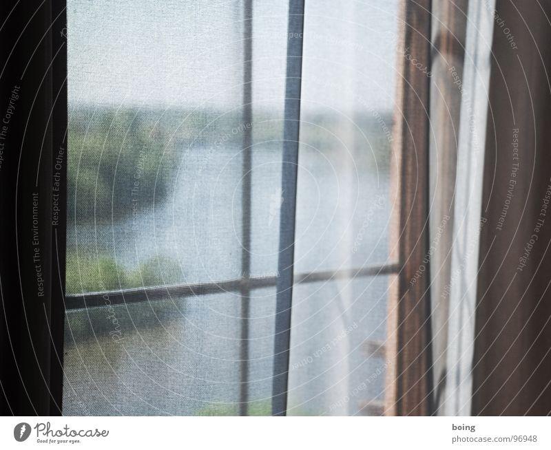 Das Wasser Fenster Luft Elektrizität Stoff Vergänglichkeit Fluss Aussicht Falte Sehnsucht Flussufer Vorhang durchsichtig Fernweh Gardine gefangen Main