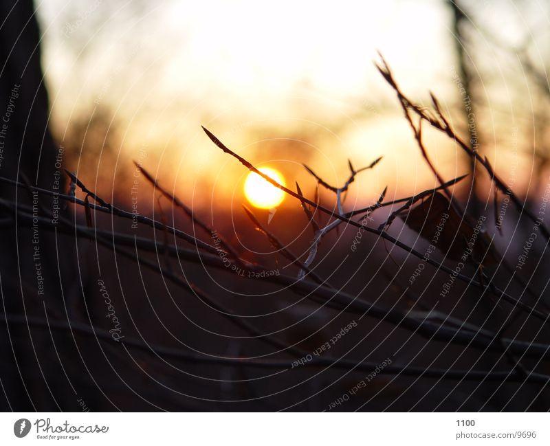 Sonnenuntergang Natur Himmel Sonne Berge u. Gebirge