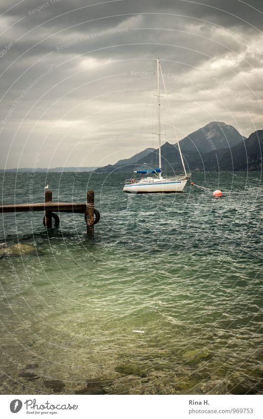 Sturm über dem Gardasee Natur Sommer Landschaft Wolken dunkel Berge u. Gebirge See Horizont Wind sitzen Italien Unwetter Steg Möwe Anlegestelle
