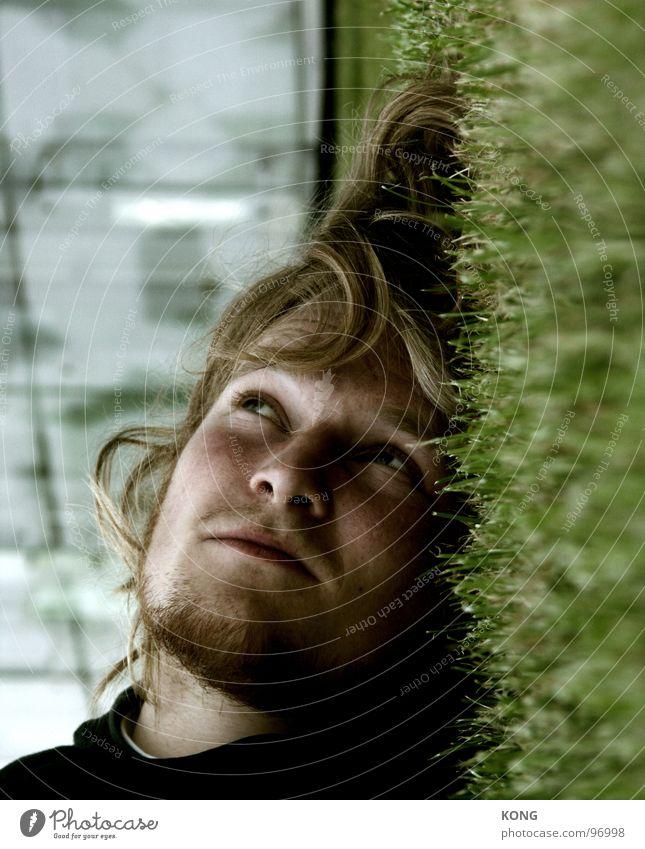 träumer Mann Sommer Gesicht Haare & Frisuren träumen Junger Mann liegen Rasen Bart Langeweile bleich verträumt Hongkong Wuschelkopf Sommerlaune