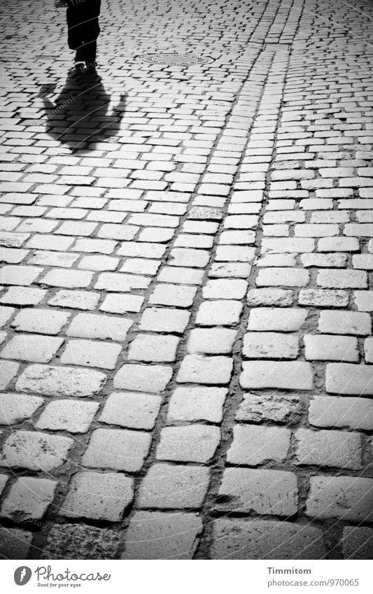 Karl träumt. Frau Erwachsene 1 Mensch Wege & Pfade Handtasche Pflastersteine Rinne Abfluss Stein Linie gehen Blick ästhetisch dunkel einfach grau schwarz