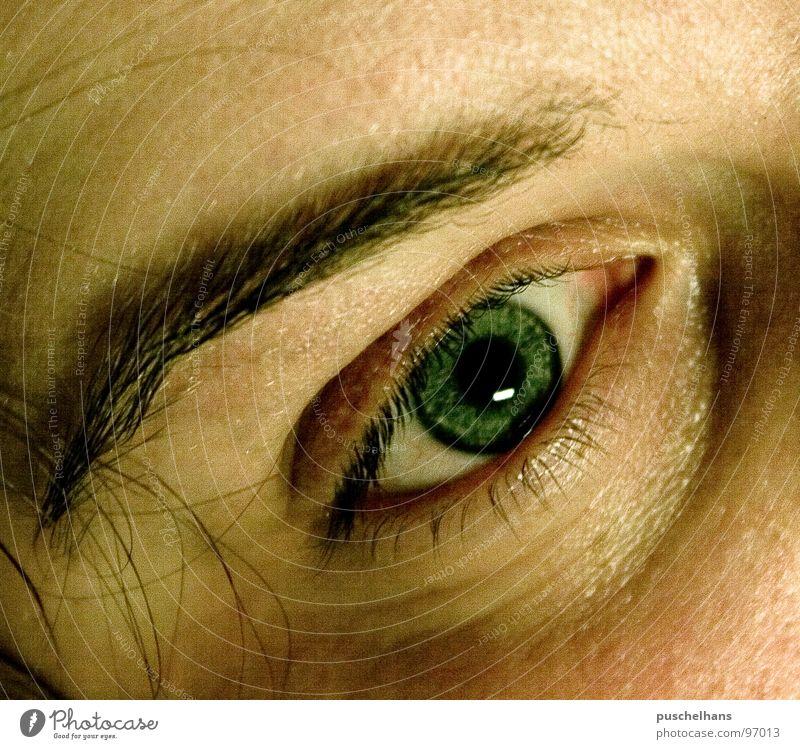 psycho durchdringen Augenbraue Seele ernst Aussicht Einblick Konzentration Makroaufnahme Nahaufnahme Schwäche Mensch Körperteile Perspektive Blick Haut