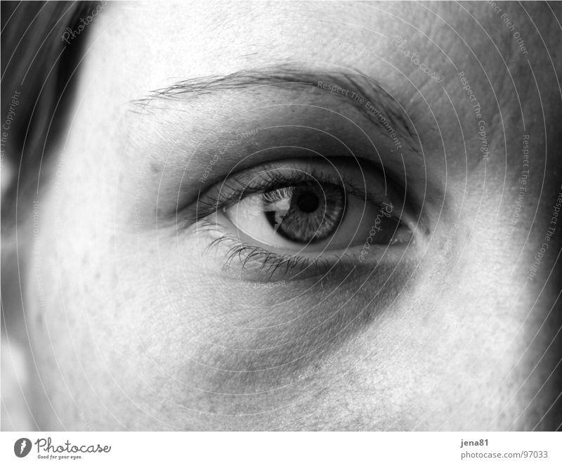 Auge Mensch Gesicht Auge Gefühle Sinnesorgane Wahrheit sichtbar