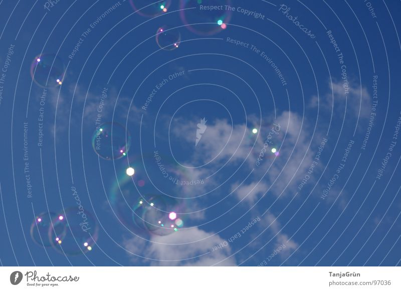 Träume Luft Seifenblase Wolken Spielzeug träumen schimmern mehrfarbig glänzend weiß Kindheitserinnerung Erinnerung Schweben Freude Himmel Sommer blasen Blase