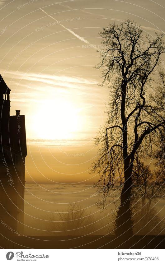 retro | als es noch Märchen und Sagen gab... Natur Sonnenaufgang Sonnenuntergang Nebel Baum Burg oder Schloss Mauer Wand alt mystisch Märchenschloss Wolken