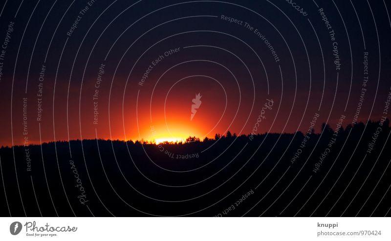 sunrise Himmel Natur Sommer schön Sonne Baum Landschaft rot Wolken ruhig Wald dunkel schwarz Umwelt Wärme orange