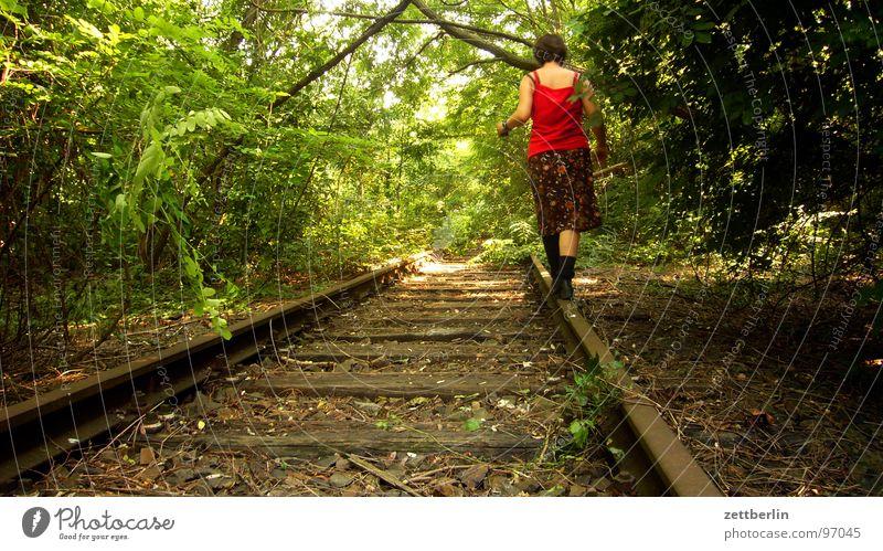 Balance II Zufriedenheit Gleichgewicht Gleise rangieren stilllegen Wald Sträucher Park Baum Waldspaziergang wandern geheimnisvoll gefährlich Überfall Dieb