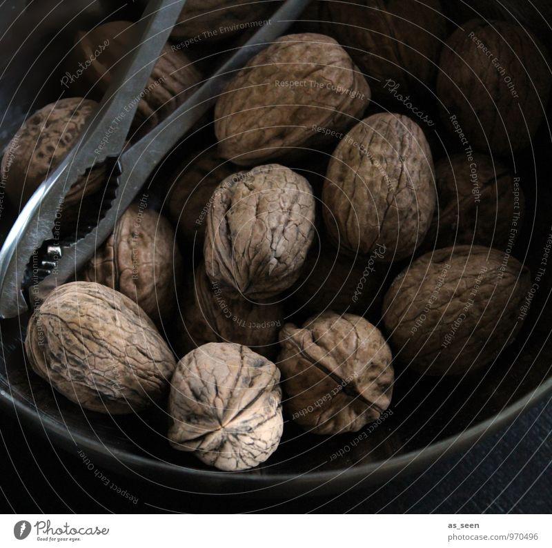 Nüsse Pflanze Weihnachten & Advent ruhig Winter dunkel Herbst grau Holz Essen braun Stimmung Lebensmittel Metall authentisch ästhetisch Ernährung